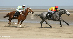 Laytown Races on the Beach